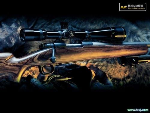 世界上最nb的武器_现今世界上最先进的武器装备《图》-天使之眼-搜狐博客