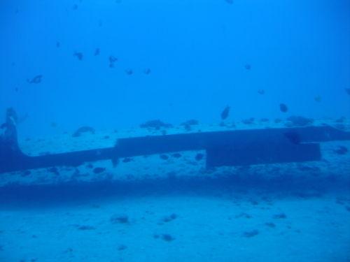 以上四幅照片是一架飞机的残骸