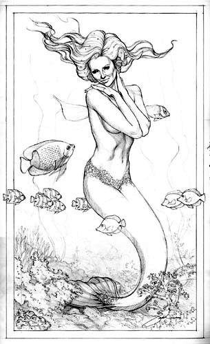 鱼尾人身,与中国古代典籍中记载的不同,欧洲人们称她为人鱼或美人鱼.