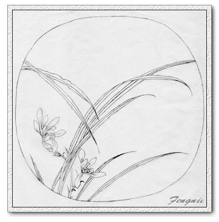 工笔花卉白描练习