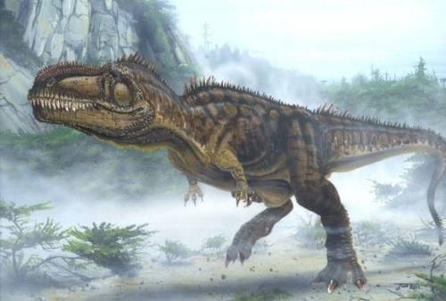 游广州动物园之看恐龙化石展览