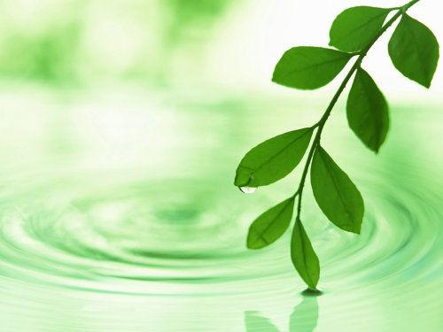壁纸素材轨道绿叶v壁纸绿色矢量图工程植物树叶桌面500_375站场矢量中间站背景设计图图片