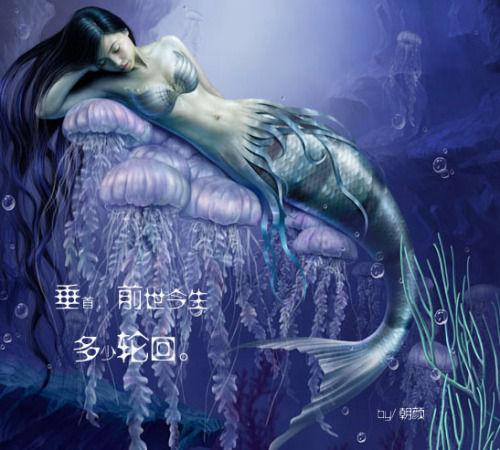你游过来,在冰蓝的海底城堡,一笑百媚,宛如飞翔.