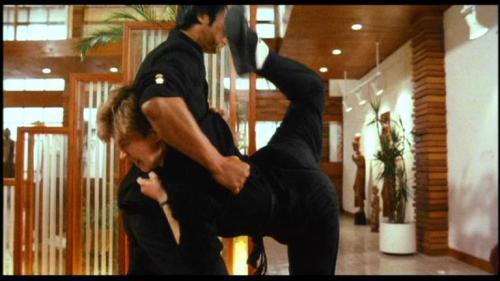 港产女性动作片的滥觞暨经典――《皇家师姐》 江湖