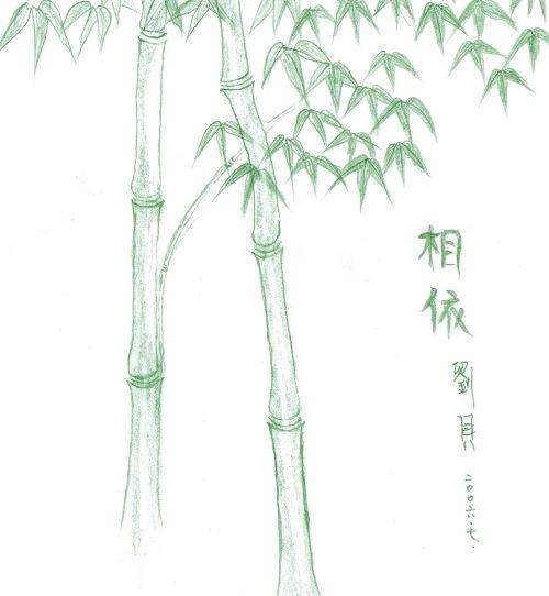 今天闲来无事,用铅笔画了一幅竹子,虽然不怎么样,但自己觉得舒服!