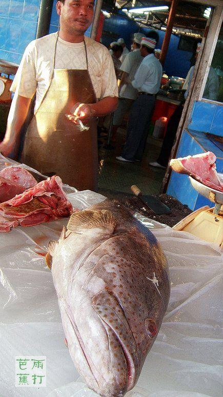 【小鸟摄影】新埠岛的黄昏   美味的海鲜