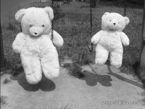 小熊可爱背影 壁纸