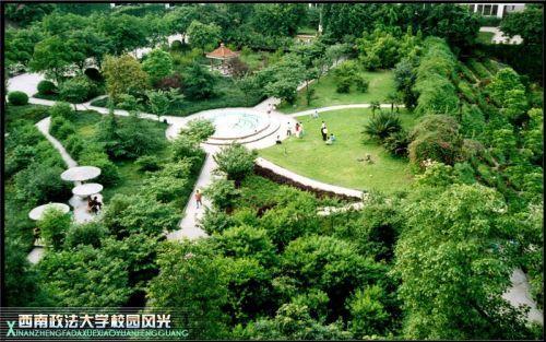 美丽校园西政风景图片