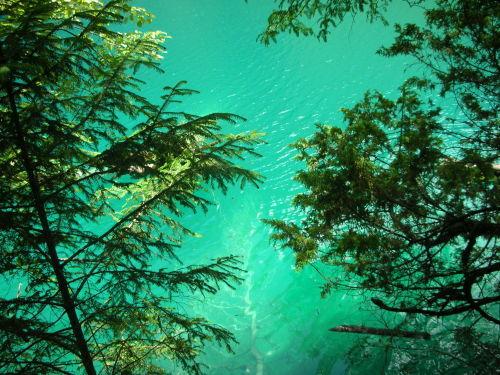 平静如水的日子-橄榄树-搜狐博客
