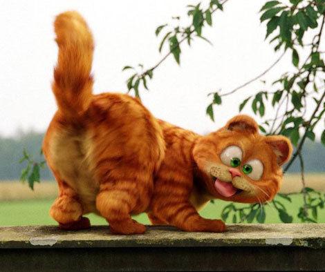 哈哈,加菲猫!