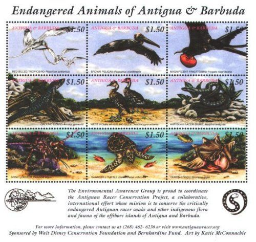 濒危动物-鸟类邮票世界-搜狐博客