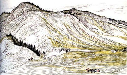 初中风景画画荷叶素描